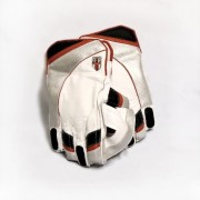 Templar Wicket Keeping Gloves